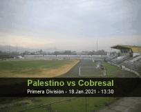 Palestino vs Cobresal