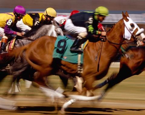 Trading em Corridas de Cavalos