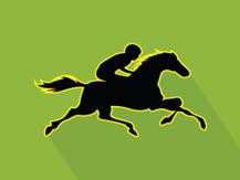 Apuestas en caballos - ¡estamos en la pista! Reanudando estudios en Newcastle