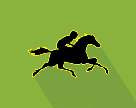 Apostas em cavalos - estamos na pista! Ascensão Doyle