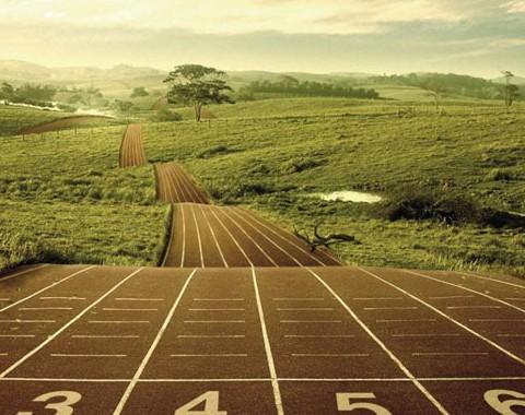 A maratona do trader profissional