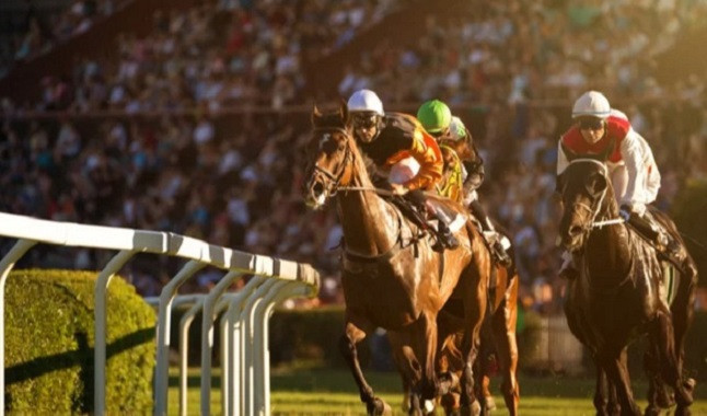 New rules are announced to strengthen horse racing and Syndicates