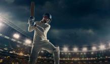 Descubra cómo funciona el Cricket