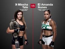 Preview: Miesha Tate vs Amanda Nunes (UFC - 9 July 2016)